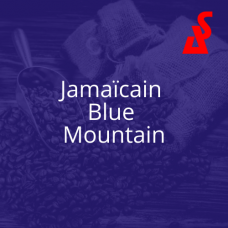 Jamaican Blue Mountain (250g*)